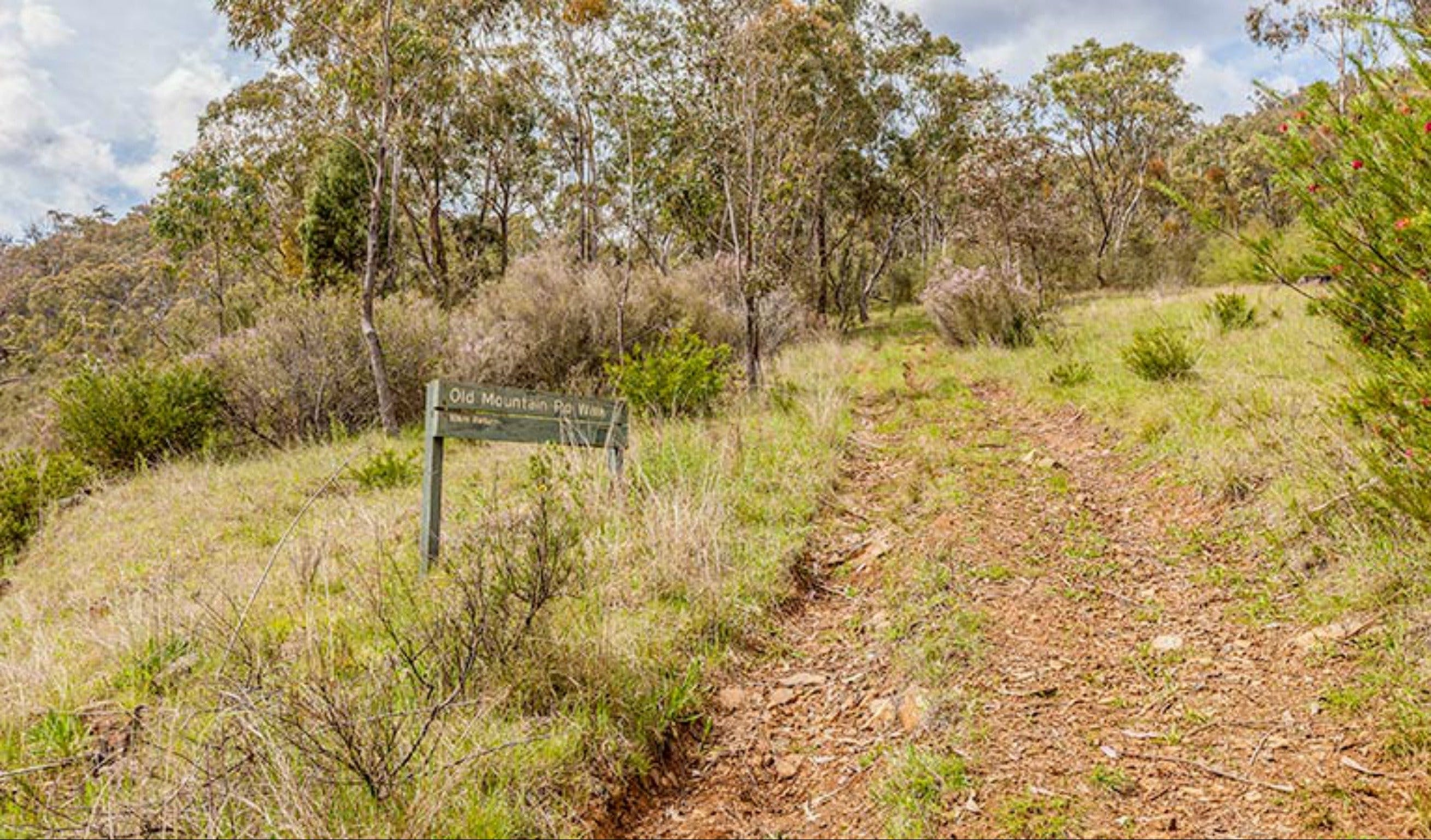 Old Mountain Road Walking Track - Accommodation Search