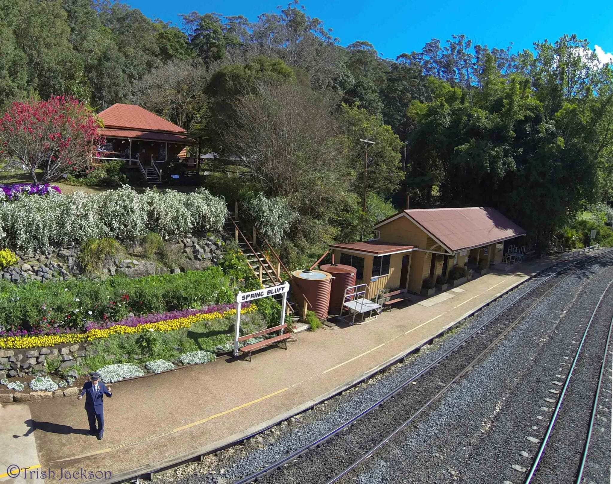 Spring Bluff Railway Station - Accommodation Search