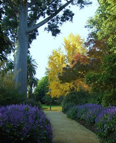 Albury Botanic Garden - Accommodation Search