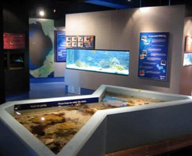 Marine and Freshwater Discovery Centre - Accommodation Search