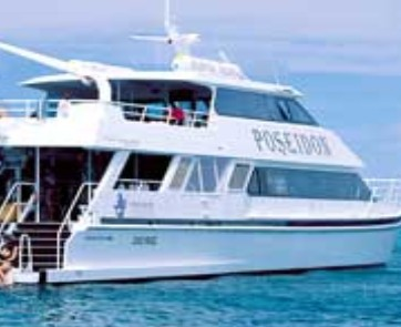 Poseidon Outer Reef Cruises - Accommodation Search