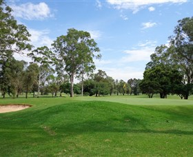 Singleton Golf Club - Accommodation Search
