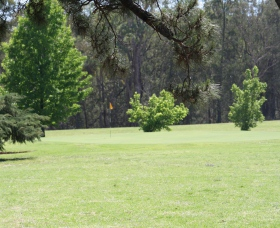 Inverell Golf Club - Accommodation Search