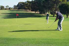 Waikerie Golf Club - Accommodation Search