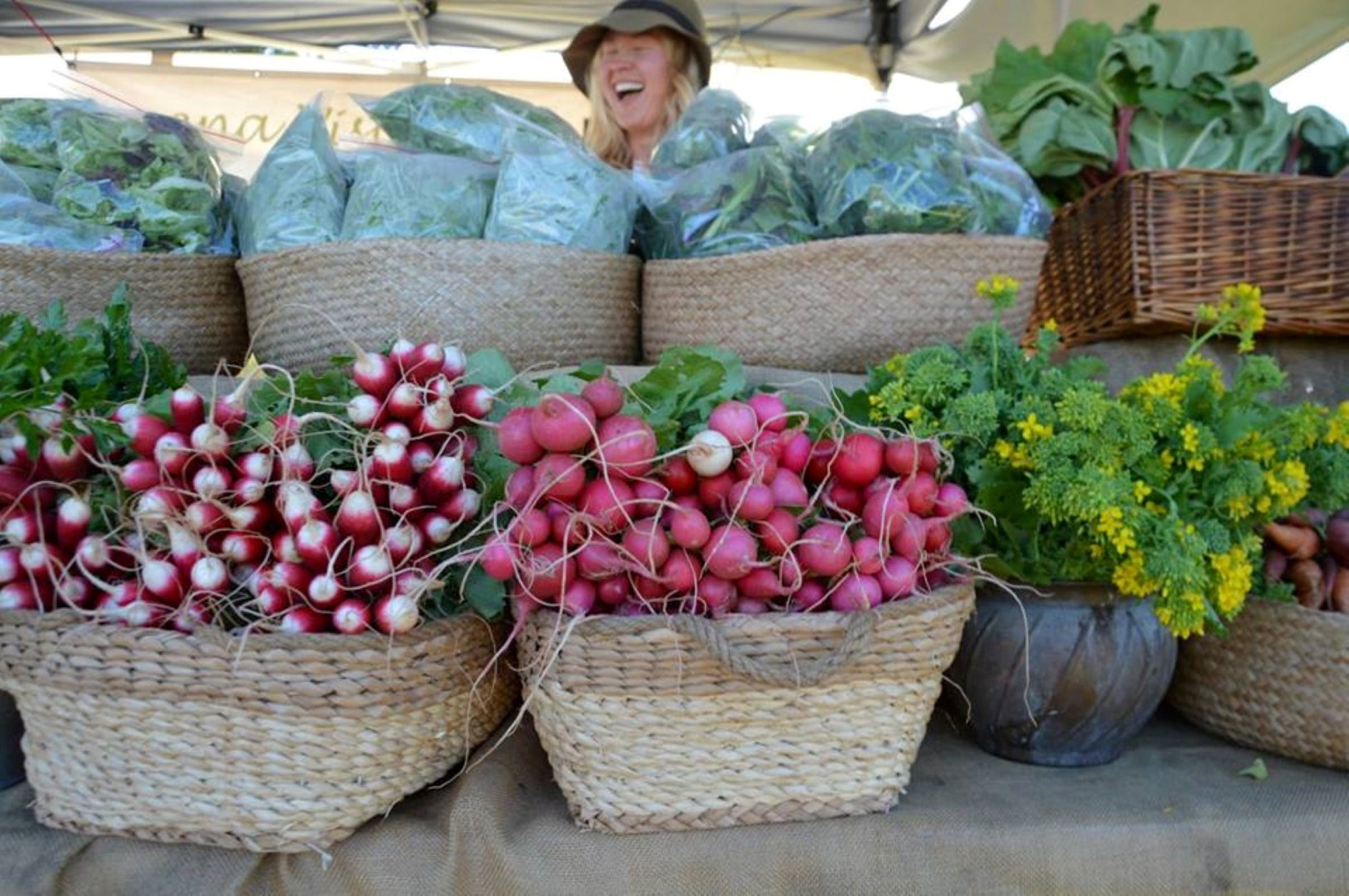Berry Farmers' Market - Accommodation Search
