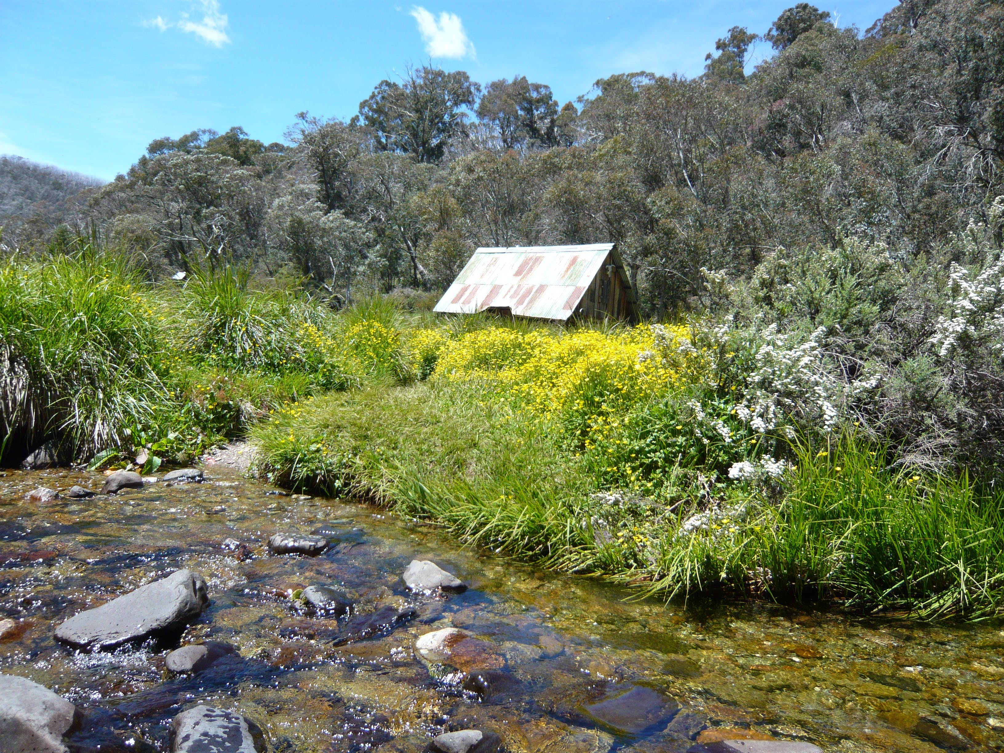 Hedonistic Hiking's Falls Creek to Hotham - Accommodation Search
