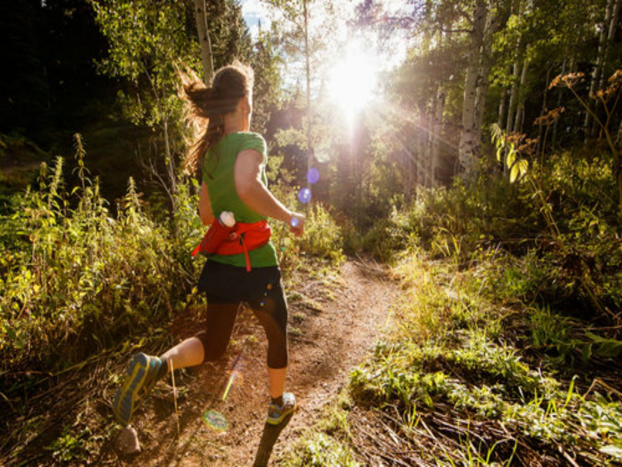 Run Dungog - Accommodation Search
