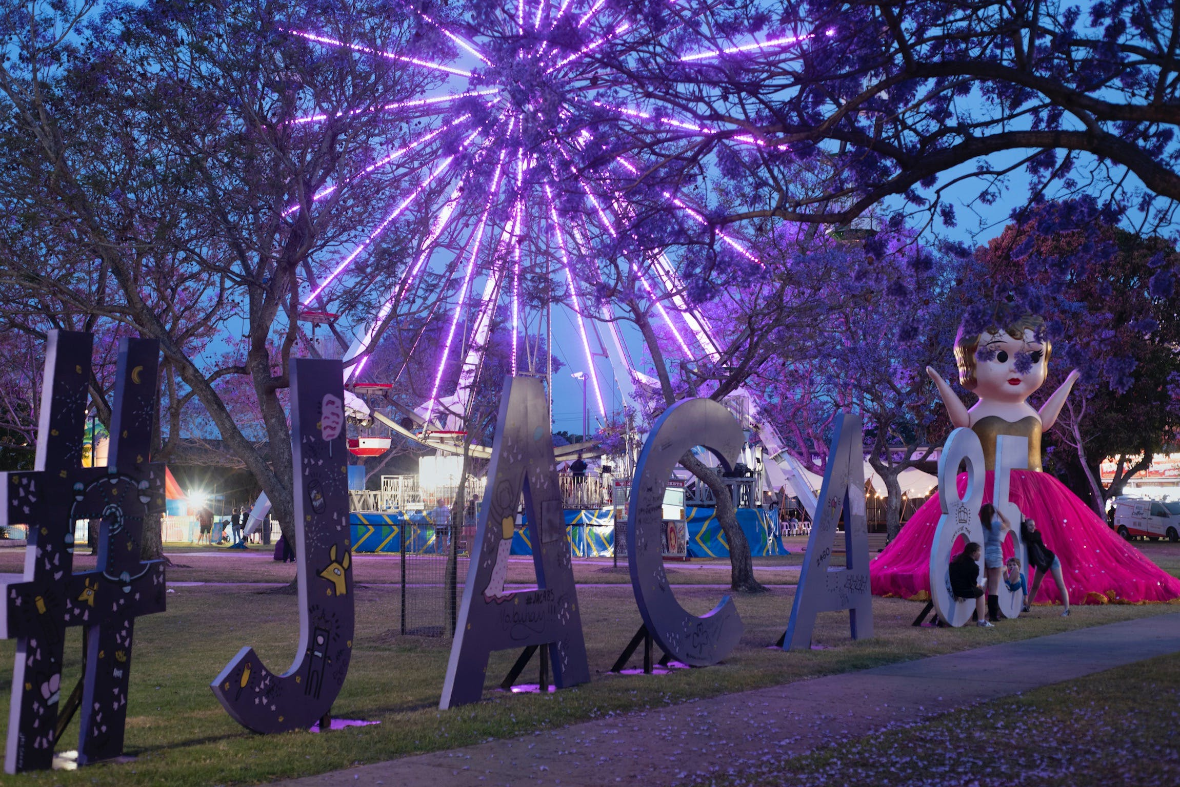 Grafton Jacaranda Festival - Accommodation Search