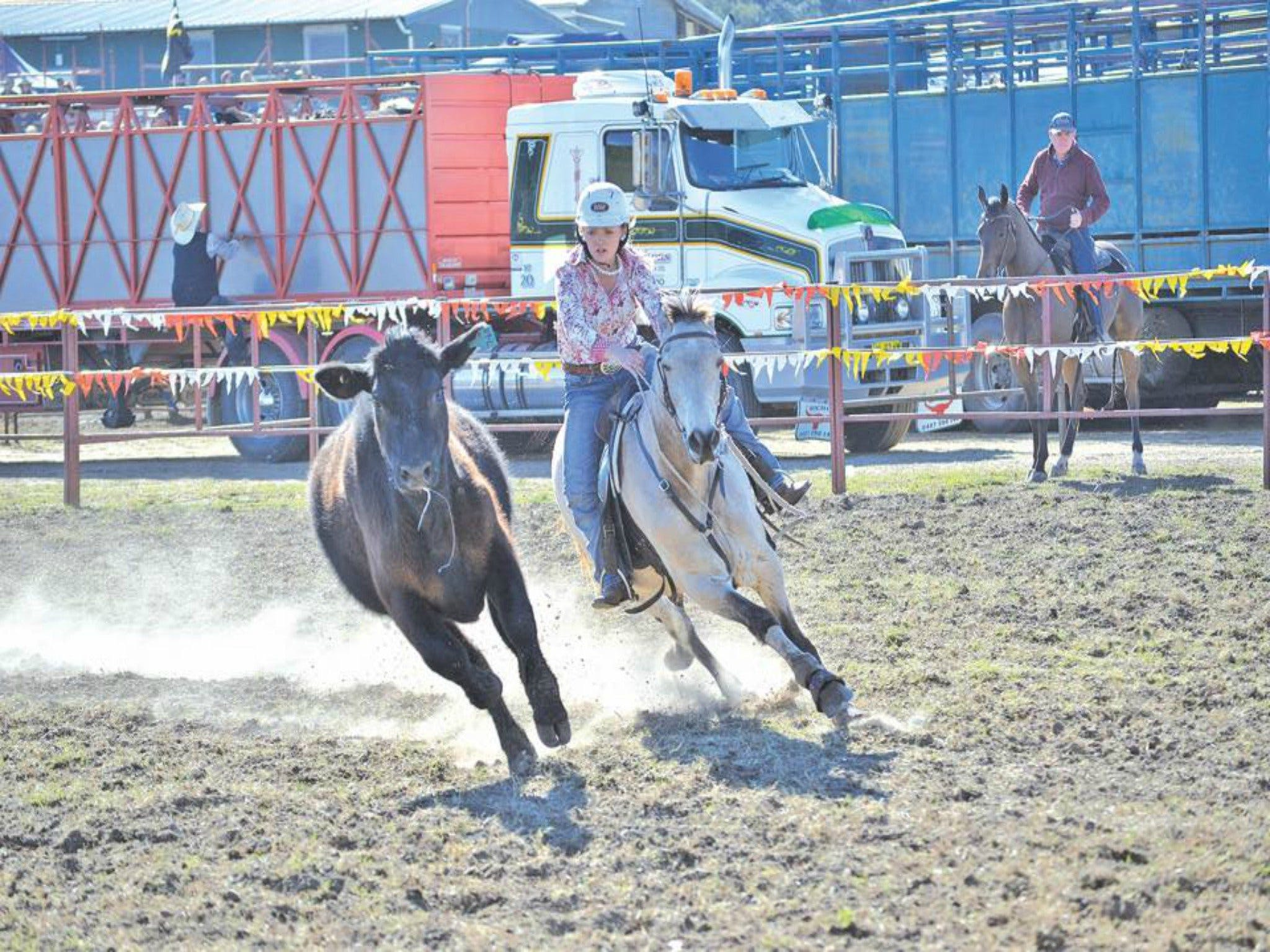 Gresford  Campdraft and Rodeo - Accommodation Search