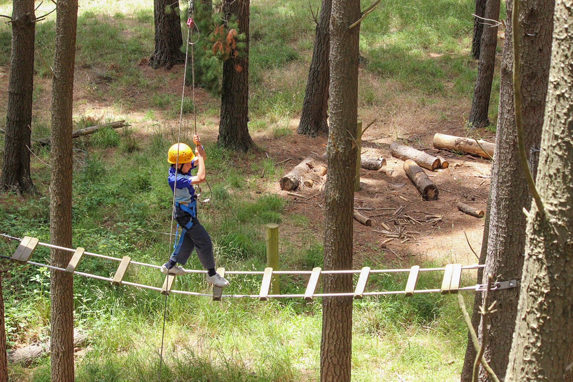 July 2020 Holidays- Go Wild at the Mt Lofty Adventure Hub - Accommodation Search
