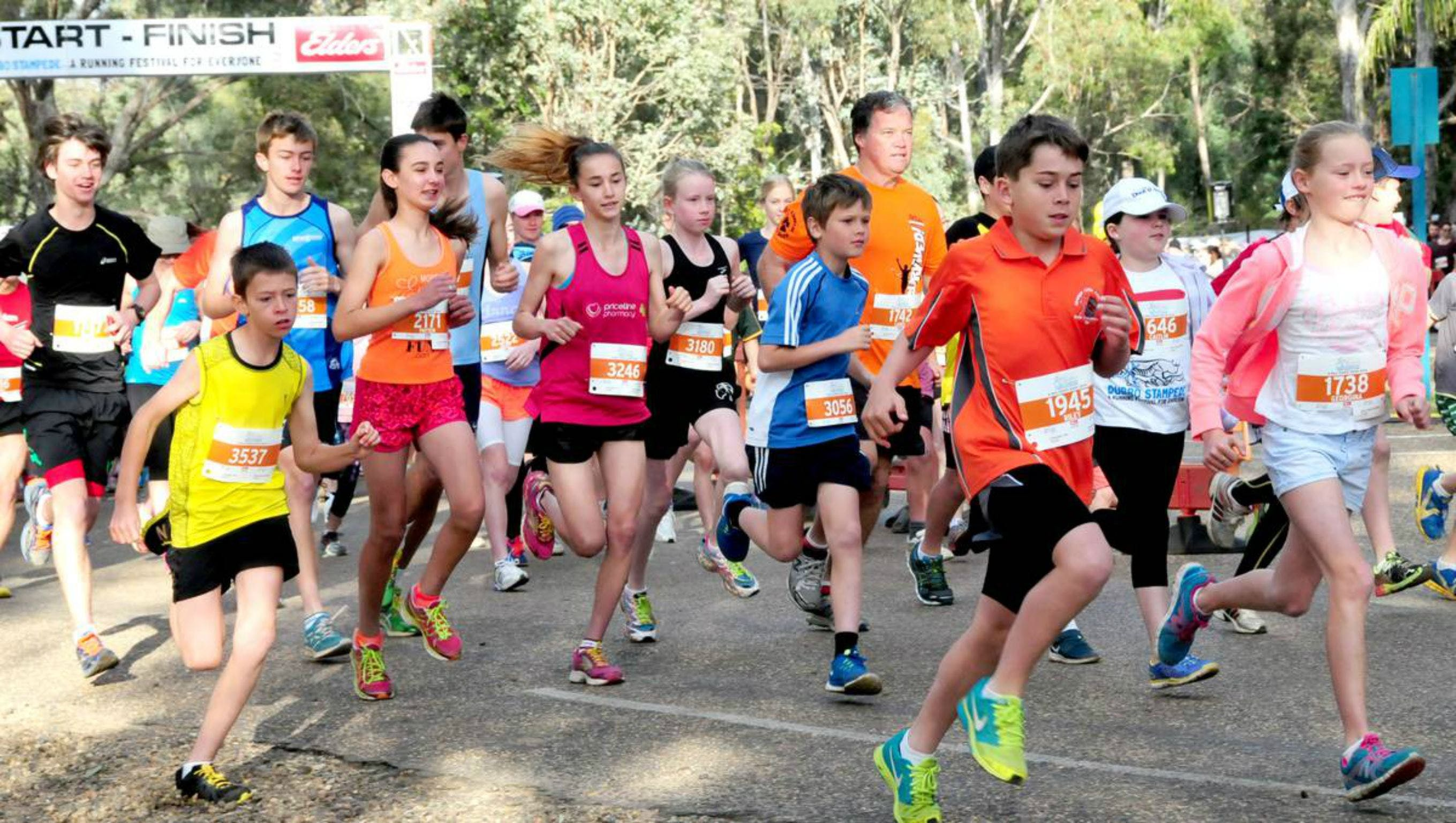 MAAS Group Dubbo Stampede Running Festival - Accommodation Search