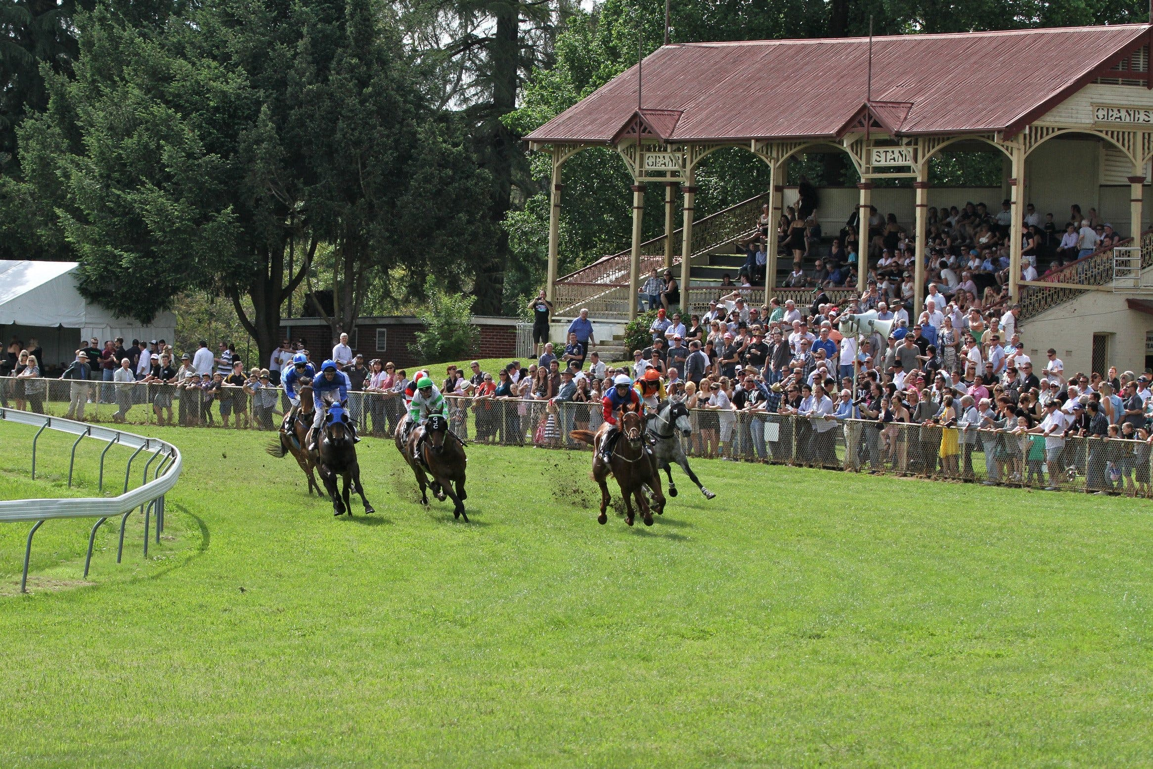 Tumut Boxing Day Races - Accommodation Search