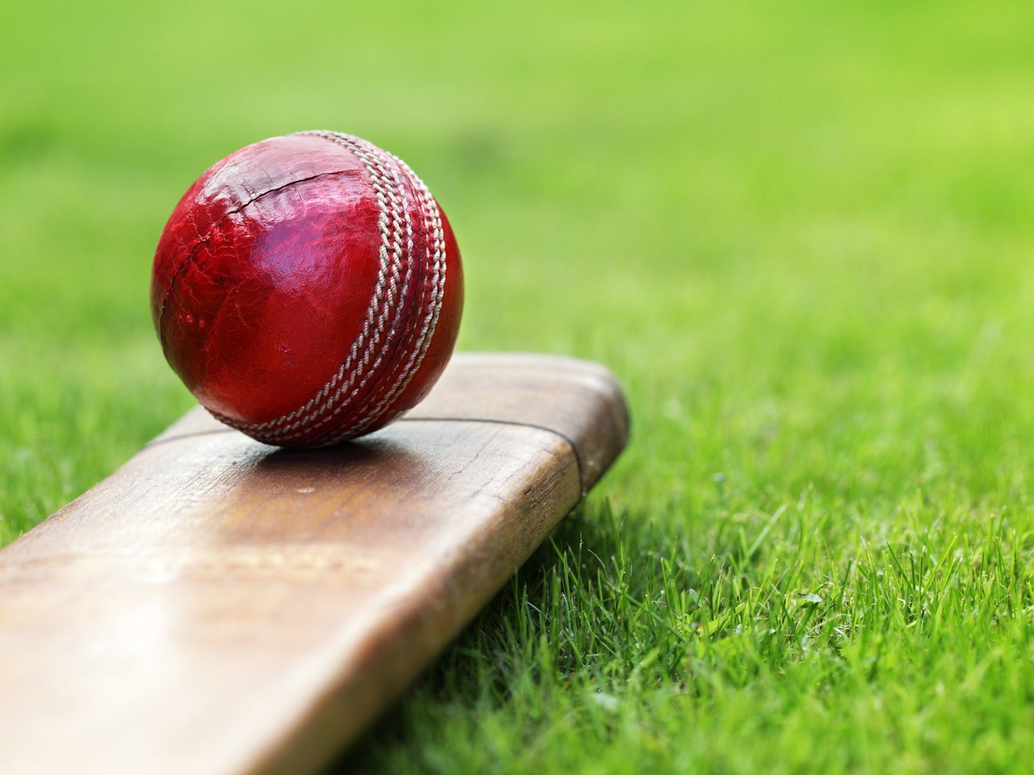 Under 13 14 15 Cricket Youth Championships - Accommodation Search