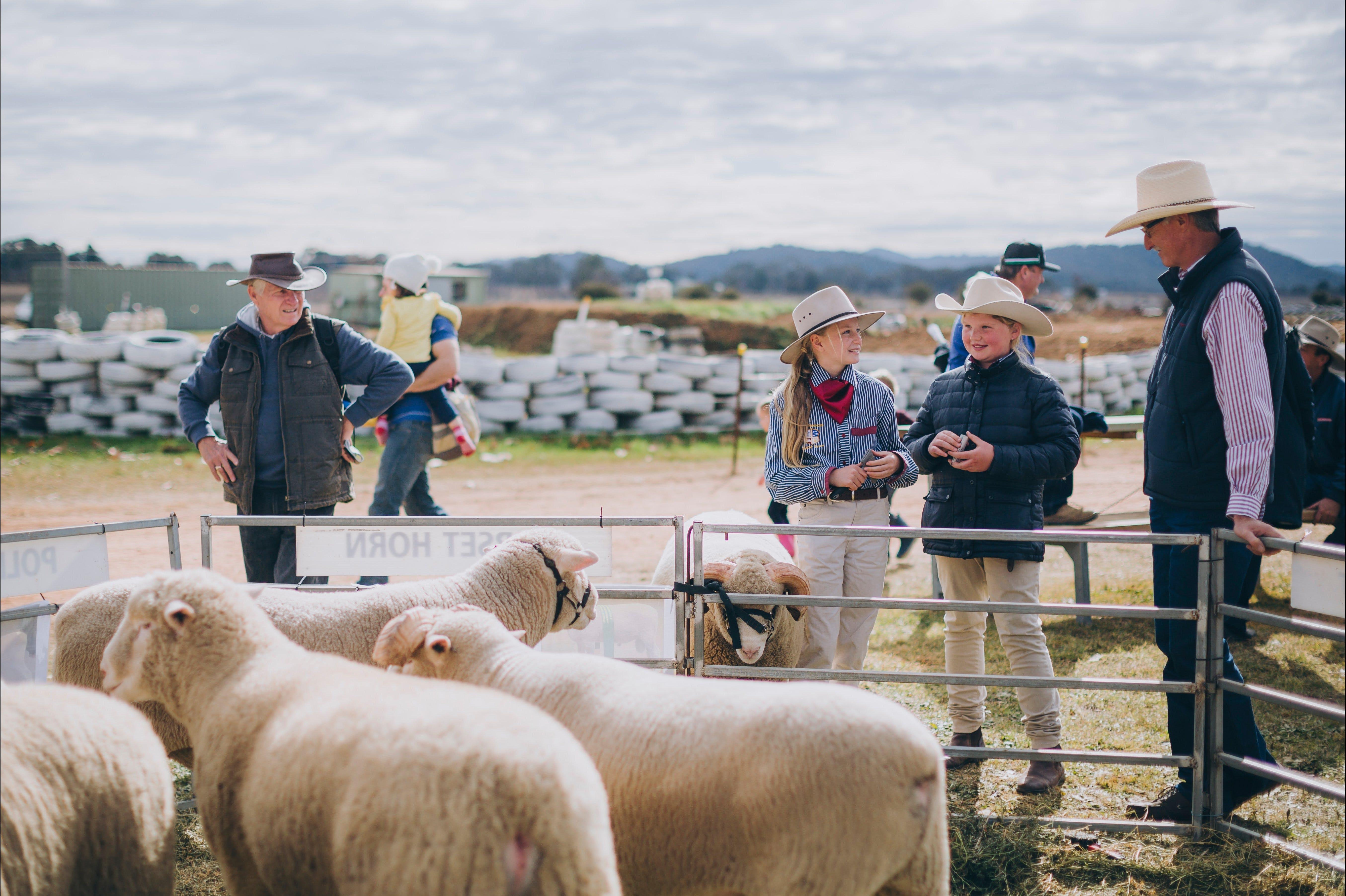 Mudgee Small Farm Field Days - Accommodation Search