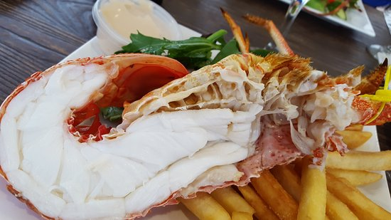 Tasmanian Gourmet Seafoods - Accommodation Search