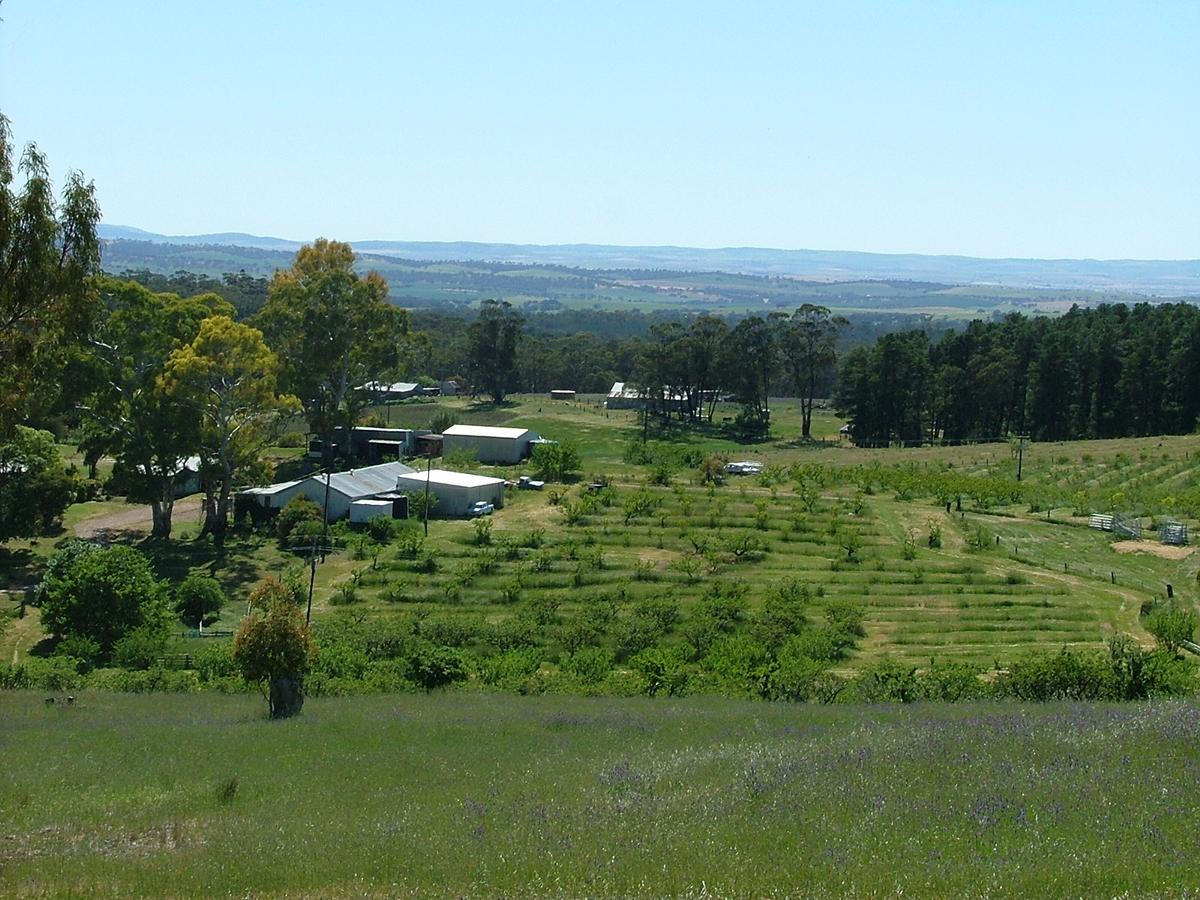 Taralee Orchards - Accommodation Search