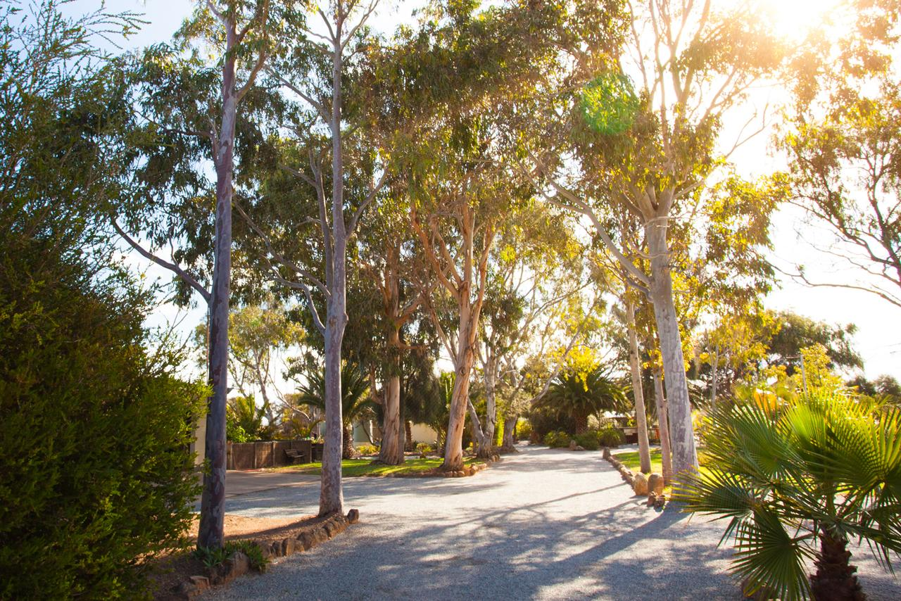 Modra's Apartments - Accommodation Search