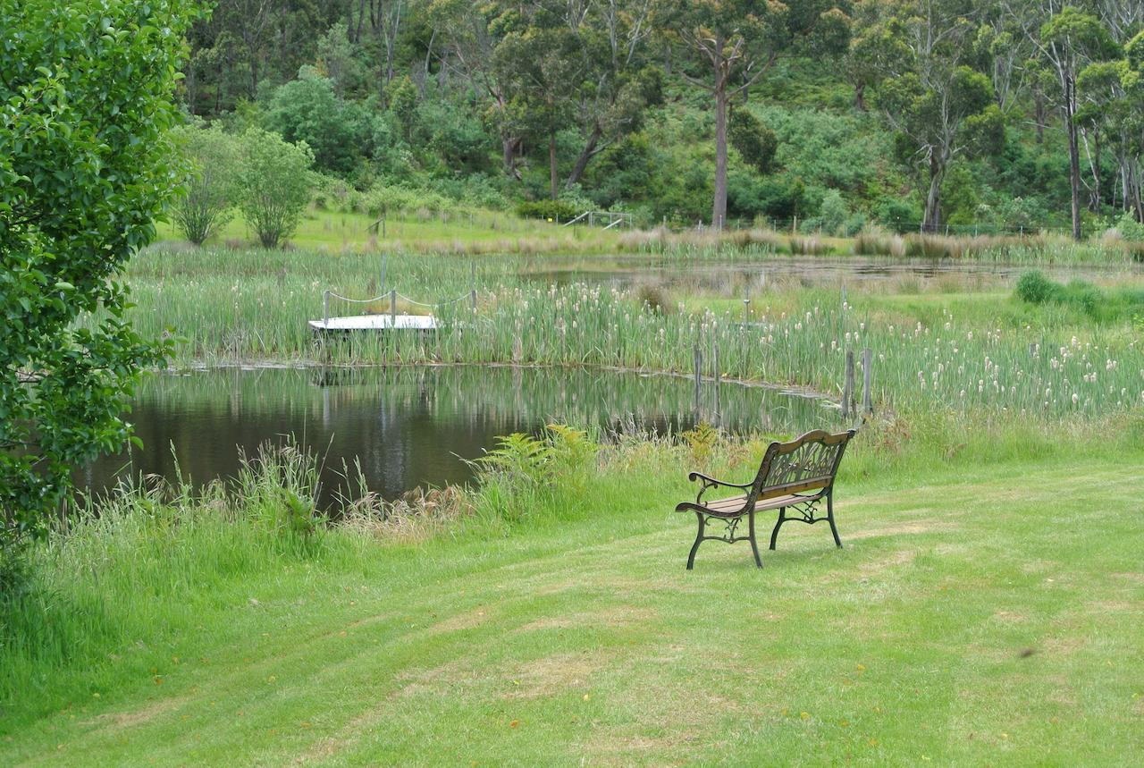 Hamlet Downs Country Accommodation - Accommodation Search