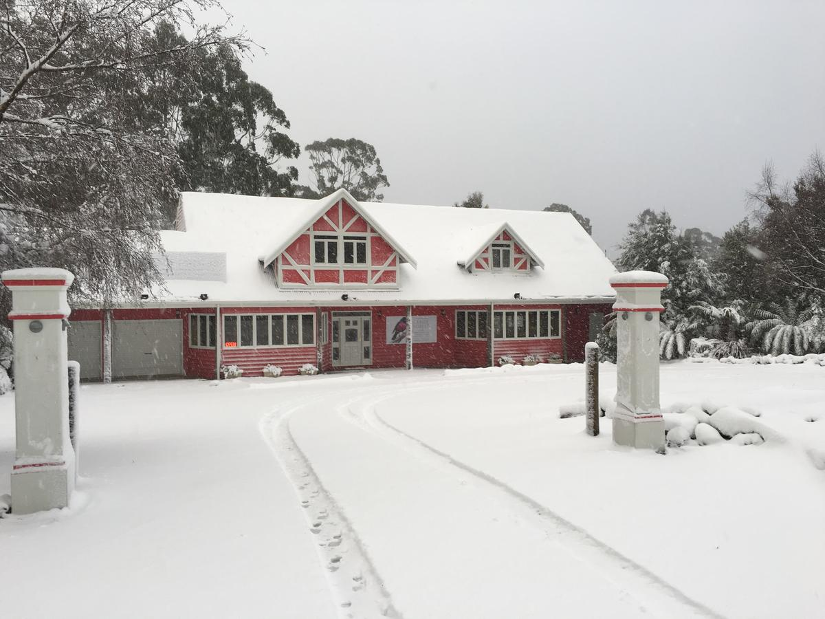 Cradle forest inn - Accommodation Search