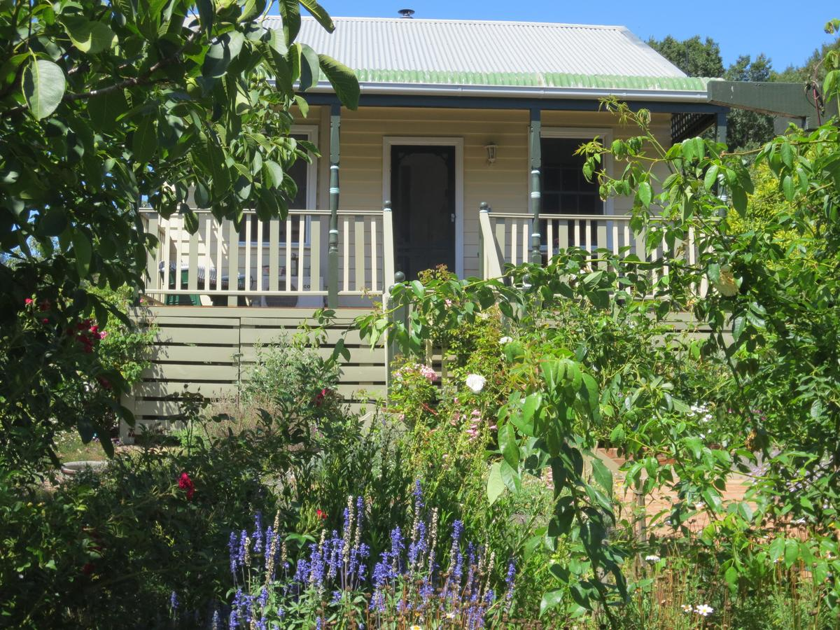 Walnut Cottage via Leongatha - Accommodation Search
