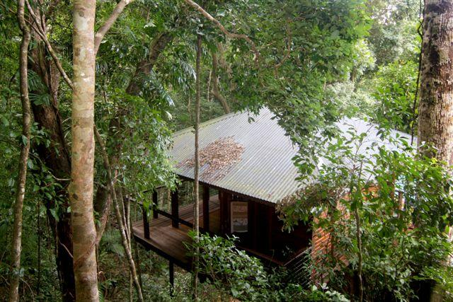 Cairns Reef  Rainforest BB - Accommodation Search