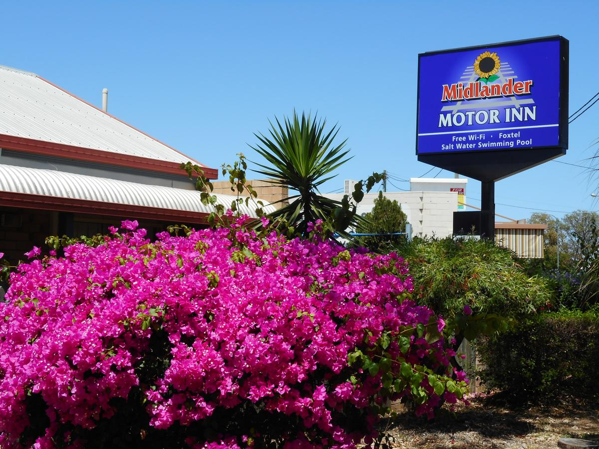 Midlander Motor Inn - Accommodation Search